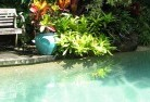 Adamsvale Swimming pool landscaping 3