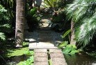 Adamsvale Tropical landscaping 10