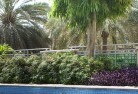 Adamsvale Tropical landscaping 13