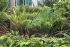 Adamsvale Tropical landscaping 2